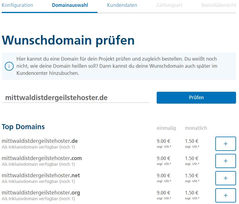 Domainbestellung