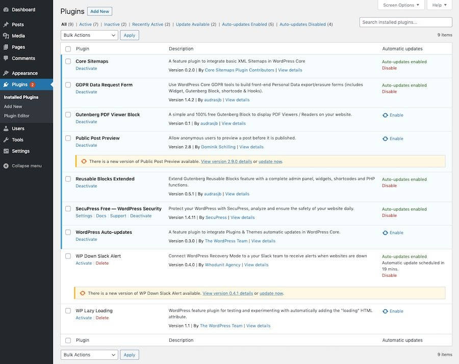 Feature-Preview WordPress 5.5: Auto-Updates aktivieren.